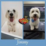 Jimmy Before & After Groom
